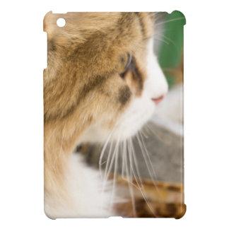 Cute Winter Cat 2 iPad Mini Cover