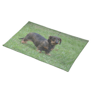 Cute Wire Haired Dachshund Placemat