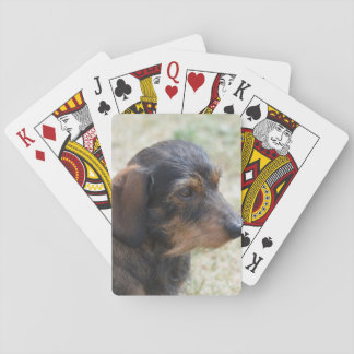 Cute Wire Haired Daschund Playing Cards