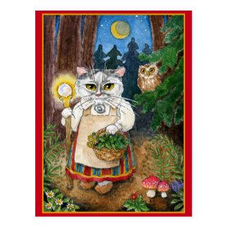 Cute witch cat fantasy postcard