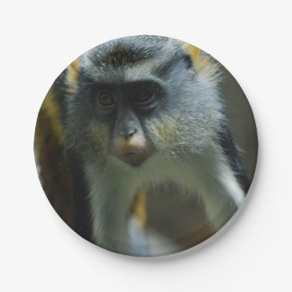 Cute Wolf's Monkey 7 Inch Paper Plate