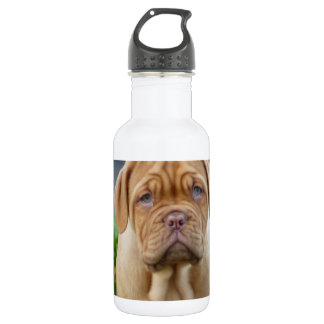 CUTE WRINKLY PUPPY WATER BOTTLE