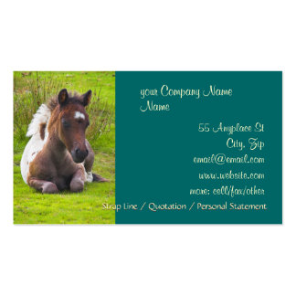 Cute Yearling Foal business cards
