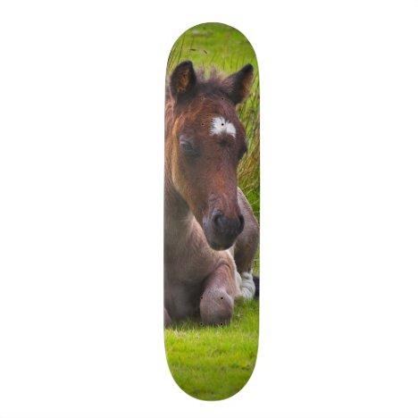 Cute Yearling Foal skateboard deck