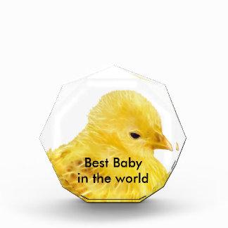 Cute yellow baby Chick Acrylic Award