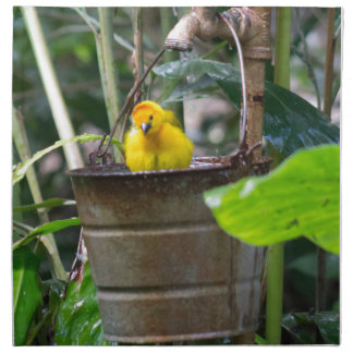 Cute, yellow bird bathing in a bucket cloth napkin