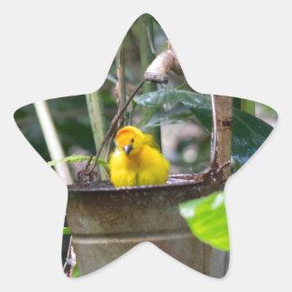 Cute, yellow bird bathing in a bucket star sticker