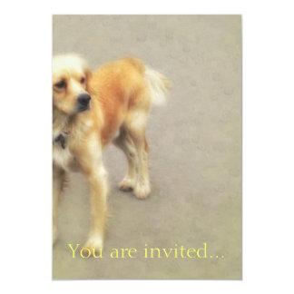 Cute Yellow Dog Card