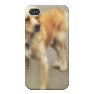 Cute Yellow Dog iPhone 4 Covers