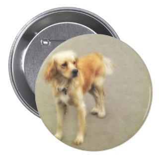 Cute Yellow Dog Pinback Button