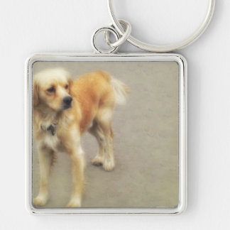 Cute Yellow Dog Silver-Colored Square Keychain