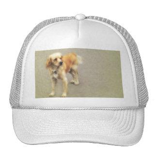 Cute Yellow Dog Trucker Hat