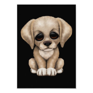Cute Yellow Labrador Retriever Puppy Dog on Black Card