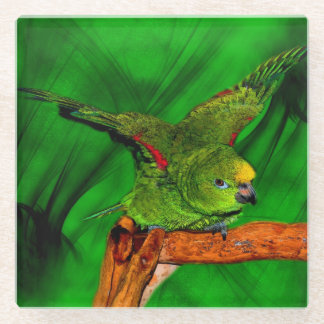 Cute Yellow Nape Amazon Parrot Glass Coaster