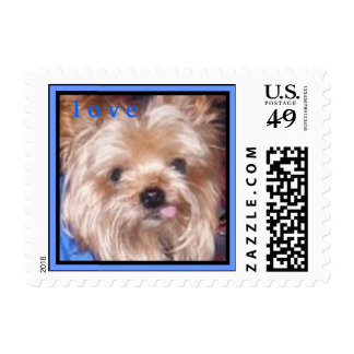 CUTE YORKIE ( I AM SHELBY ) LOVE STAMP