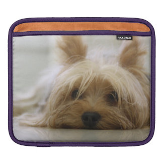 Cute Yorkie iPad Sleeve