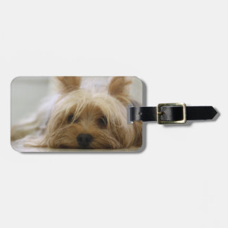 Cute Yorkie Travel Bag Tag