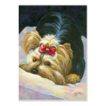 Cute Yorkie Playing Large Business Cards (Pack Of 100)