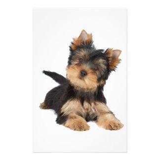 Cute yorkie puppy stationery
