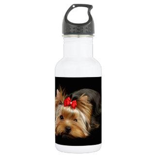 Cute yorkie stainless steel water bottle