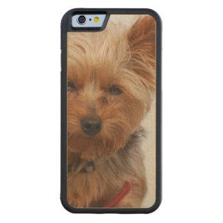 Cute Yorkie Carved® Maple iPhone 6 Bumper Case