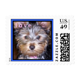 CUTE YORKIES ( I AM CRYSTAL BLUE ) LOVE STAMP