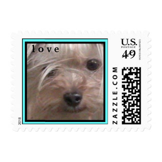 CUTE YORKIES ( I AM  SCOOBY ) LOVE STAMP