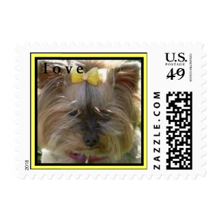 CUTE YORKIES (MY NAME IS WILLOW) - LOVE STAMP