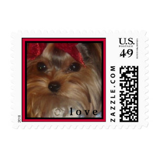 CUTE YORKIES (MY NAME IS ZOE PETITE) LOVE STAMP