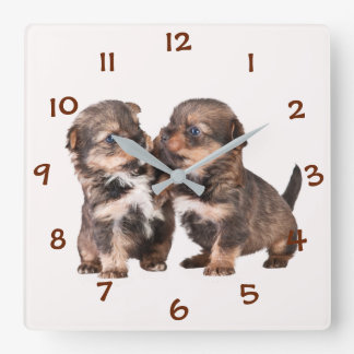 Cute Yorkshire Puppies Square Wall Clock