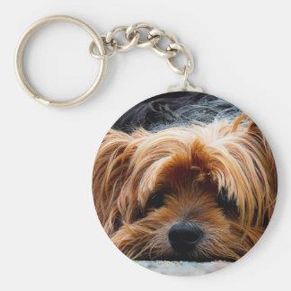 Cute Yorkshire Terrier Dog Keychain