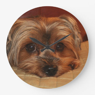 Cute Yorkshire Terrier Dog Large Clock