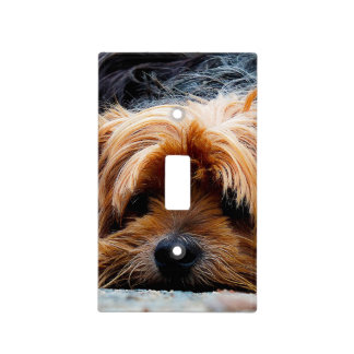 Cute Yorkshire Terrier Dog Light Switch Cover