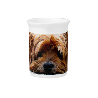 Cute Yorkshire Terrier Dog Pitchers