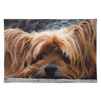 Cute Yorkshire Terrier Dog Placemats