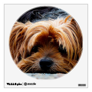 Cute Yorkshire Terrier Dog Wall Decal