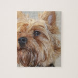 Cute Yorkshire Terrier Jigsaw Puzzle