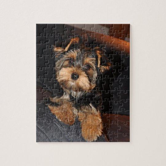 Cute Yorkshire Terrier Puppy Dog Jigsaw Puzzle | Zazzle.com