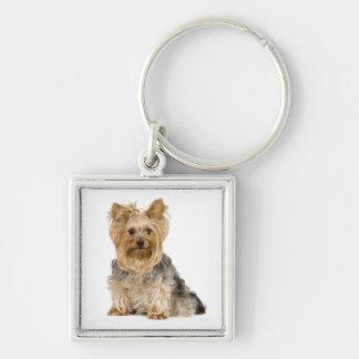 Cute Yorkshire Terrier Puppy Dog Key Chain