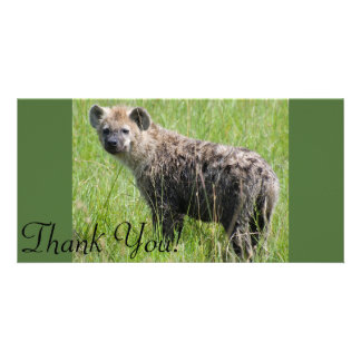 Cute Young Hyena with Wet Fur in Green Grass Photo Cards