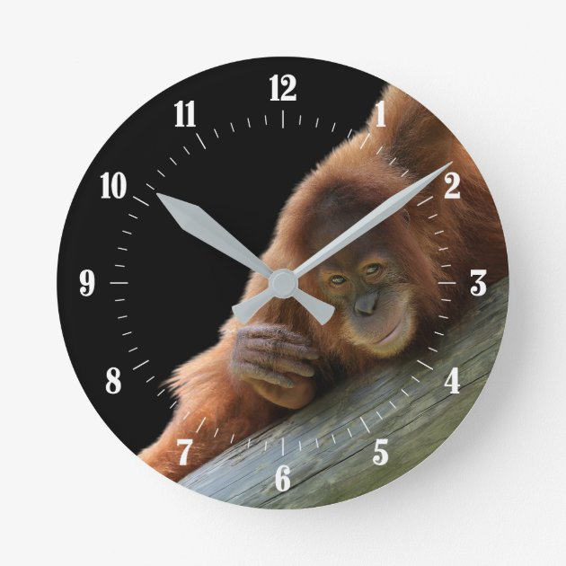 Studio Dalio - Cute Young Orangutan Large Clock
