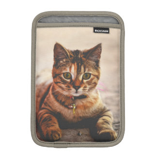 Cute Young Tabby Cat Kitten Kitty Pet Sleeve For iPad Mini