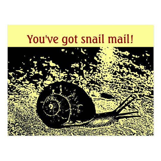 Cute You've Got Snail Mail! Postcard