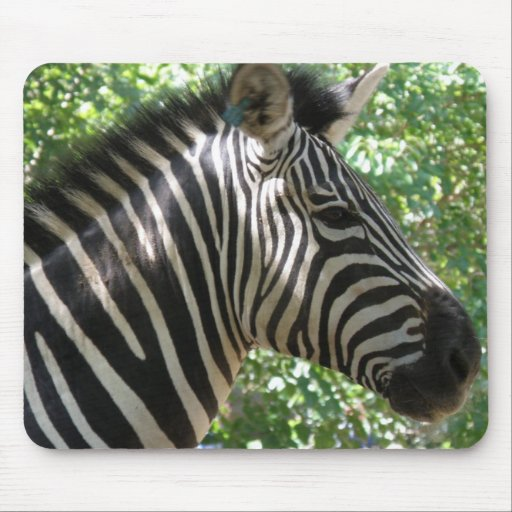 Cute Zebra Mouse Pad
