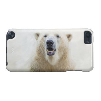 Cute  Zoo Polar Bear iPod Touch (5th Generation) Cover