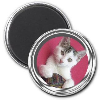 Cuteness del gatito iman de nevera