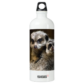 Cuteness Overdose! Aluminum Water Bottle