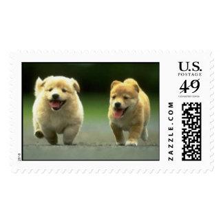cutepuppies sellos postales