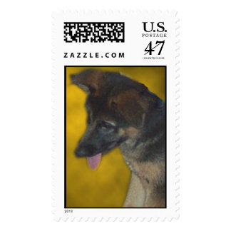Cutepuppy Postage Stamp