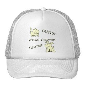 Cuter Hat